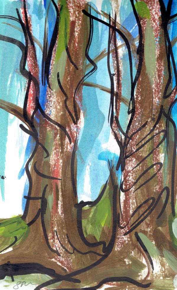 Redwoods VIII by Sonya Kleshik
