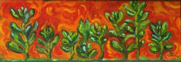 Bean Succulents by Sonya Kleshik