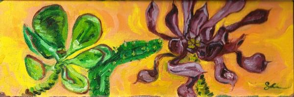 Green and Purple Succulents by Sonya Kleshik