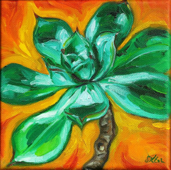 Small Green Succulent by Sonya Kleshik