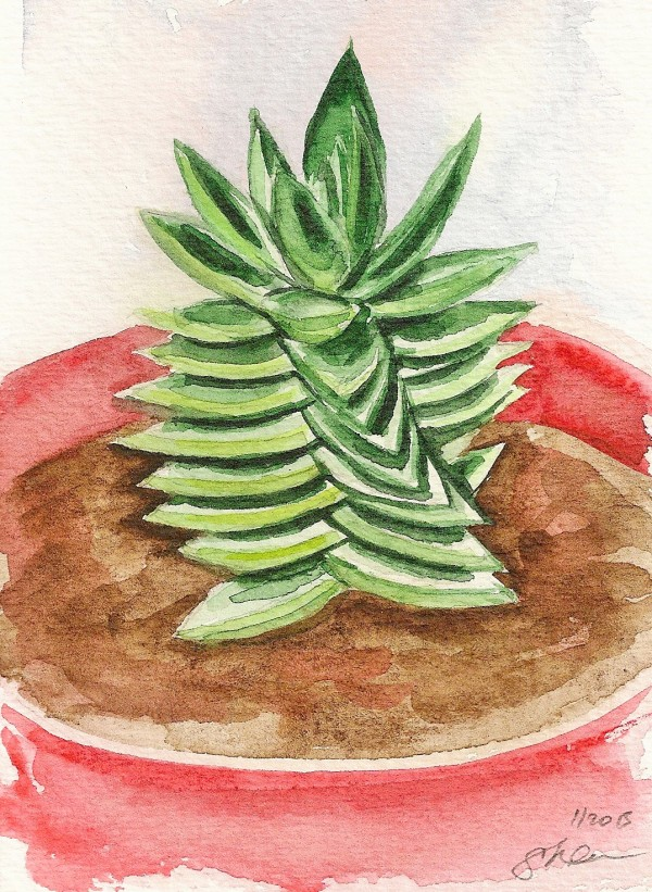 Twisting Succulent in Red Pot by Sonya Kleshik