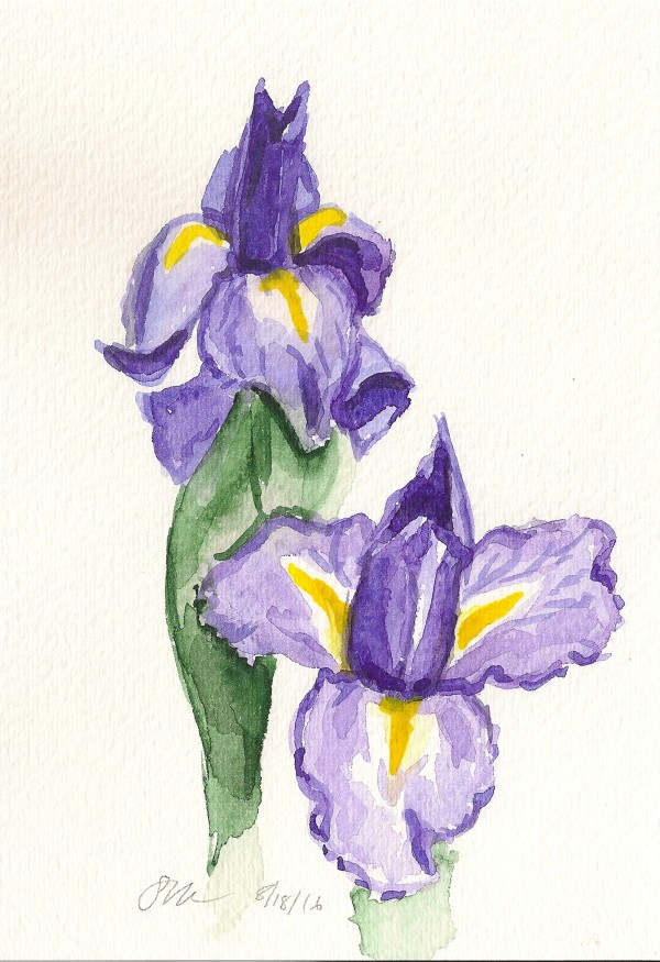 Two Irises by Sonya Kleshik