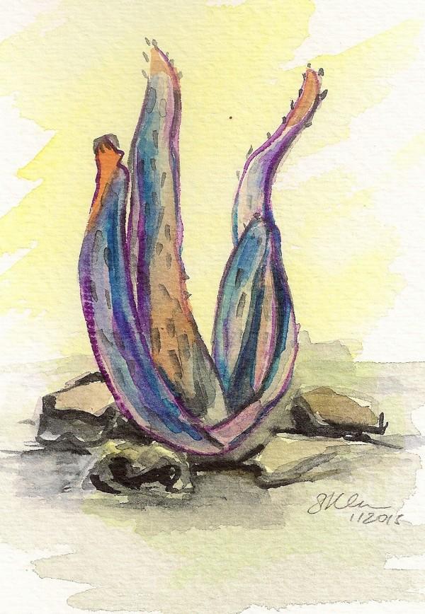 Aloe by Sonya Kleshik