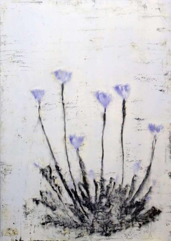 Ao keshi (Blue Poppy) by Bernard Weston