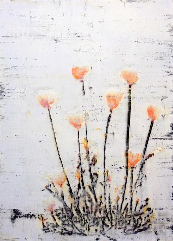 Keshi okasumeru (Delicate Poppy) by Bernard Weston