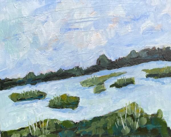 Salt Marsh VIII by Beth Murray