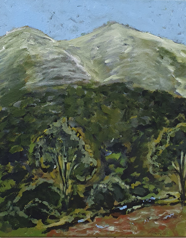 Thredbo in Summer by Claire Harrison