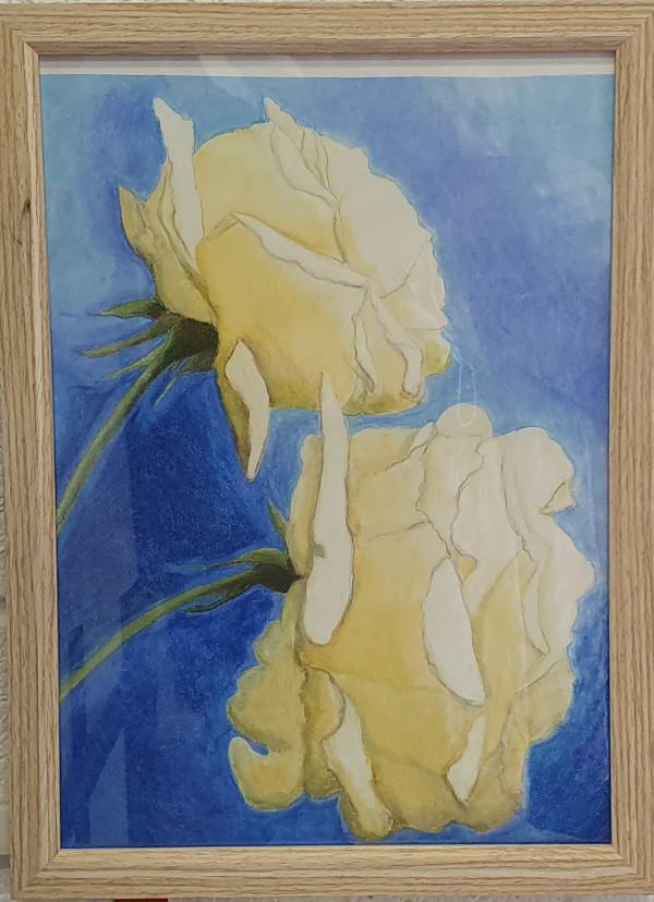 Roses by Jan Owens