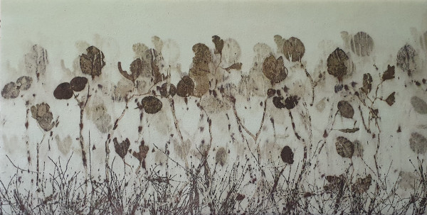 Drought by Rasa Mauragis