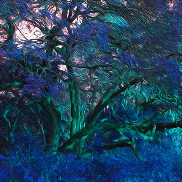 14NWood_BurningtreeBlue_c0nthi by Nancy J. Wood