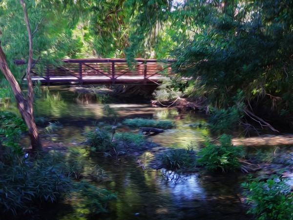 Thinking of Monet by Nancy J. Wood