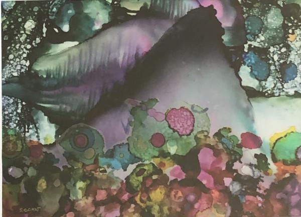 Fantasy Cove by Susan Soffer Cohn