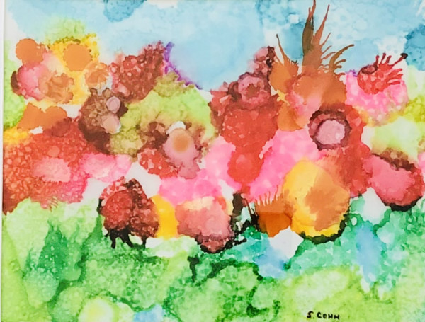 Exploding Poppies by Susan Soffer Cohn