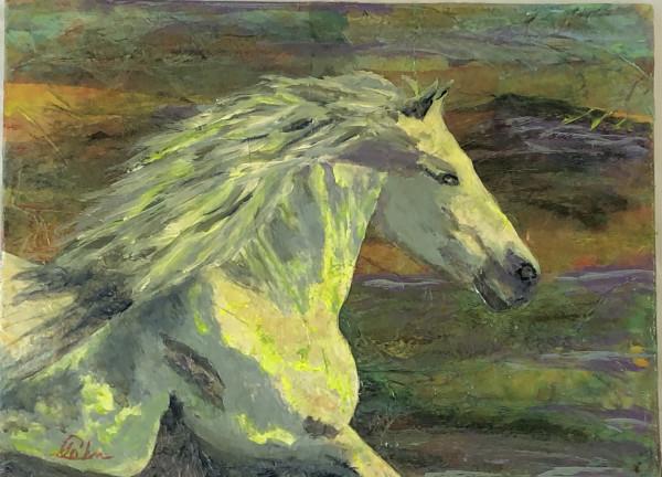 Running Wild by Susan Soffer Cohn