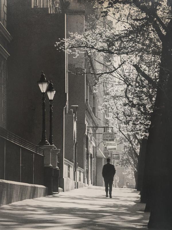 Collins Street by Grace Lock