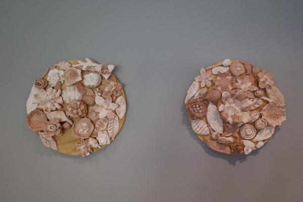 Botanical Collaboration: Ceramic Circles by Year 4 students