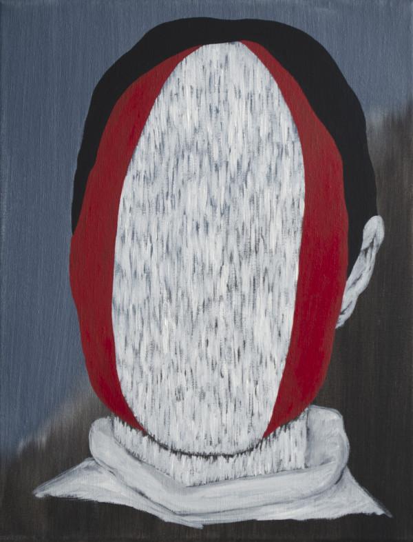 Woodpecker Feathers by Lee Clarke
