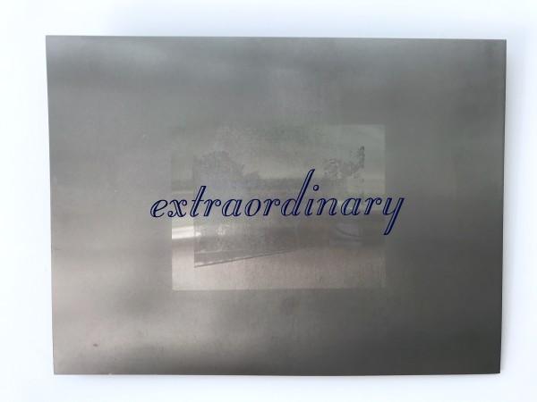 Extraordinary by Lee Clarke