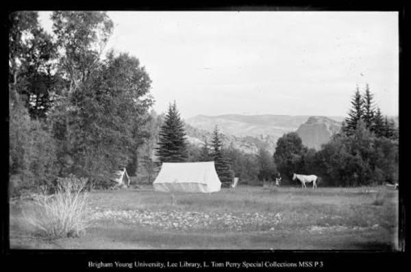 [Camp East Fork, Chalk Creek] by George Beard