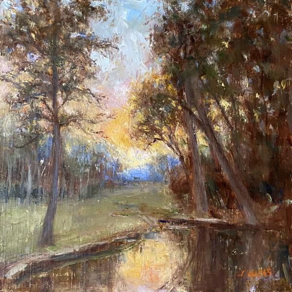 Autumn Sunset by Janet Lucas Beck