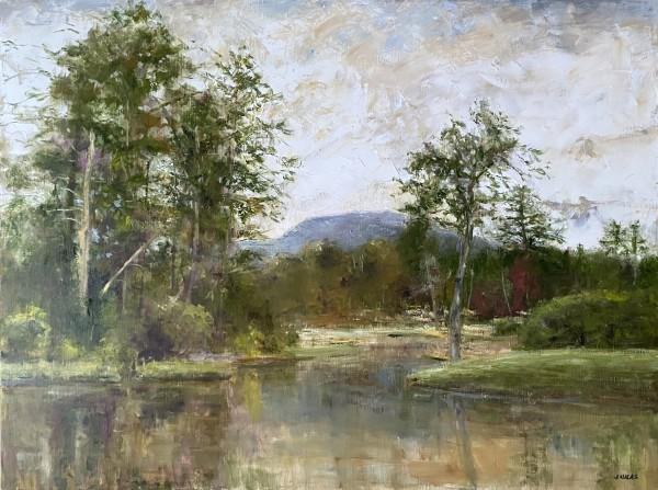 Golden Pond by Janet Lucas Beck