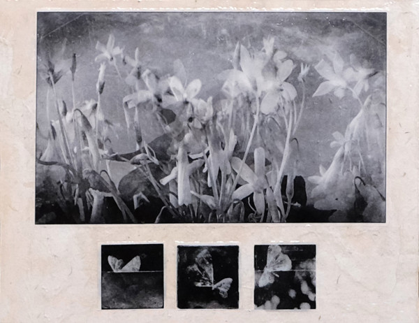 tonight's flowers by terri bell