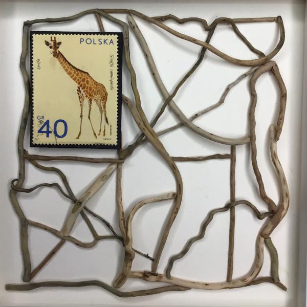 The Giraffe by Richard B. Aakre