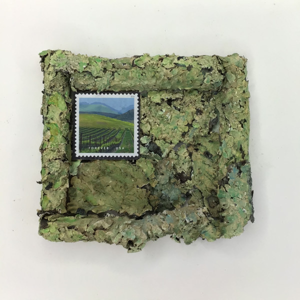 Green Lichens with Vineyard by Richard B. Aakre