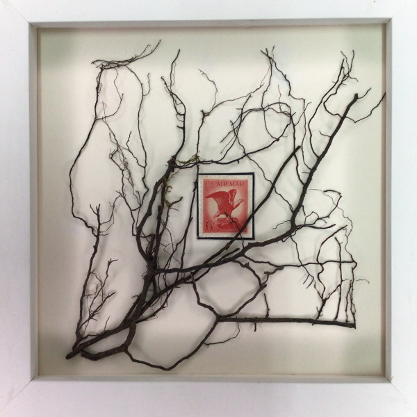 Willow Roots with 6 Cent Stamp by Richard B. Aakre