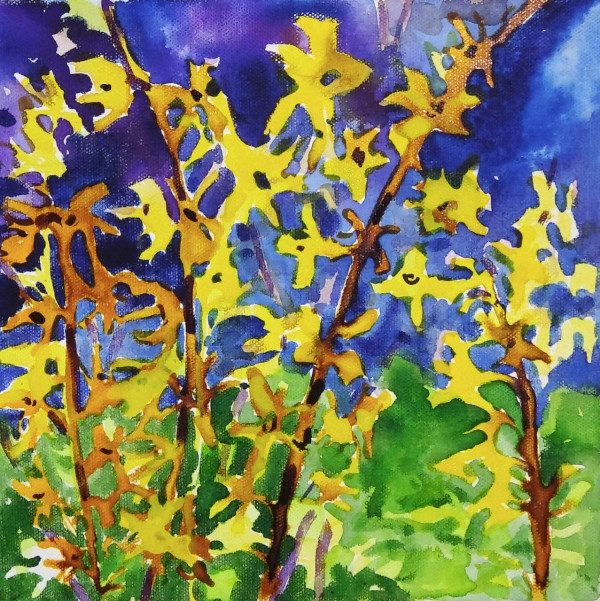Forsythia by Flora Doehler