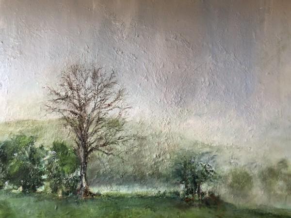 Chris' Pasture by Susan Grucci