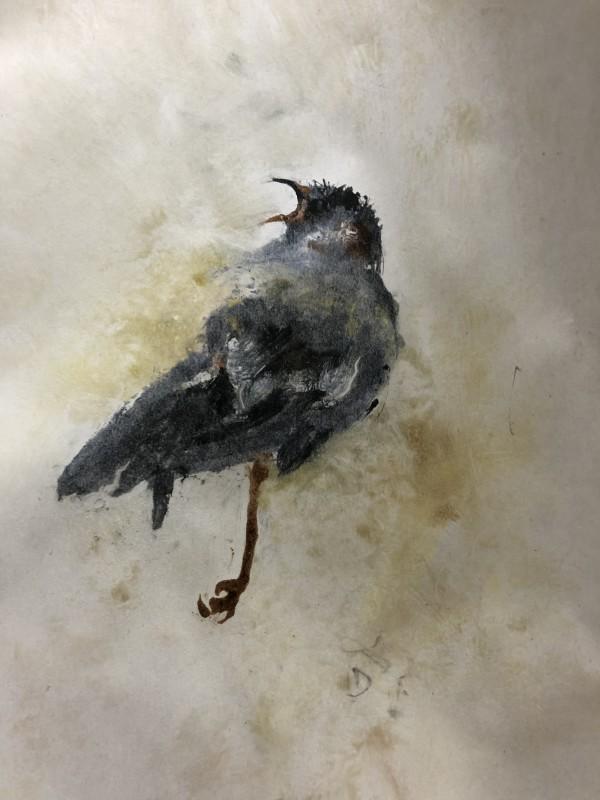 Free Falling by Susan Grucci