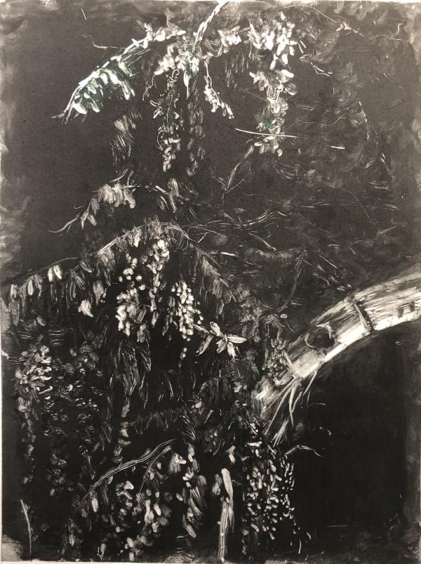 Hunter Lake Wisteria  by Susan Grucci