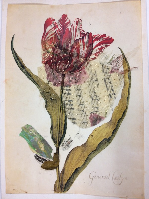 Music of the Tulip by Susan Grucci