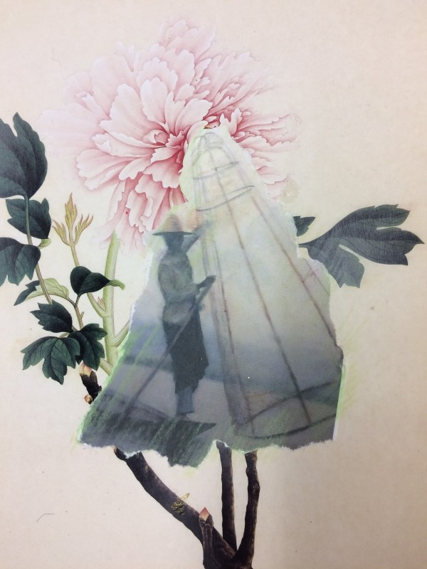 Peony - Fisherman with net by Susan Grucci