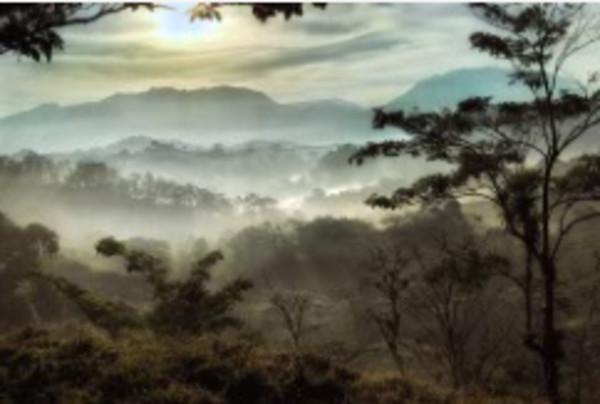 Cloudy Vista by Bill Steen