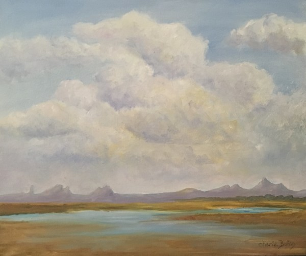 After a Monsoon by Charlie Burton