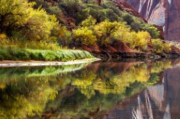 Colorado River in Glen Canyon by Gregory E McKelvey