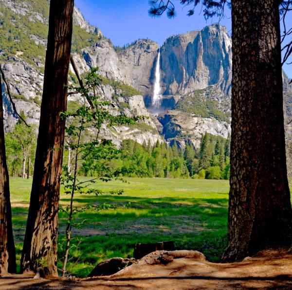 Yosemite Valley by Harold  Tretbar