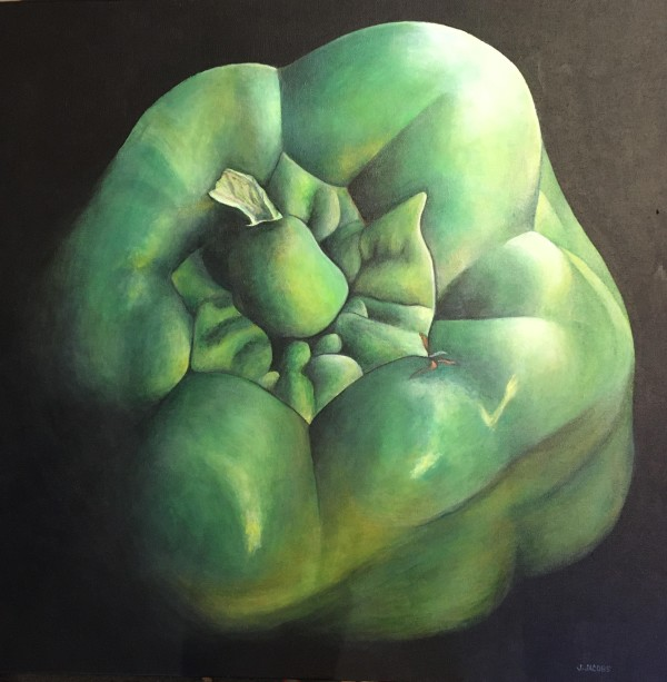Green Pepper by Judy Jacobs
