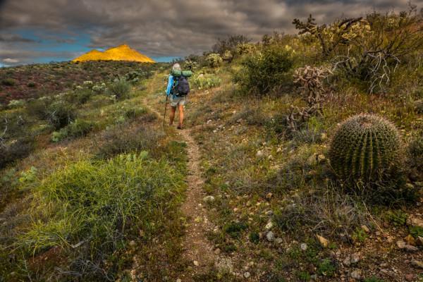 On the Arizona Trail by Larry Simkins