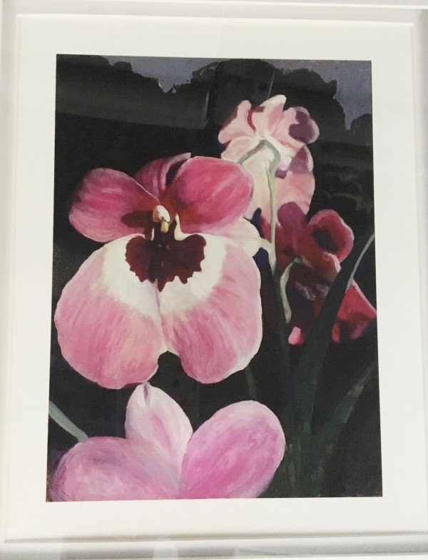 Orchid by Moira Geoffrion