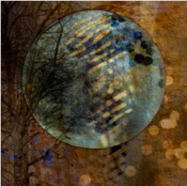 Envisioning Solitude: Moondance by Vicky Stromee