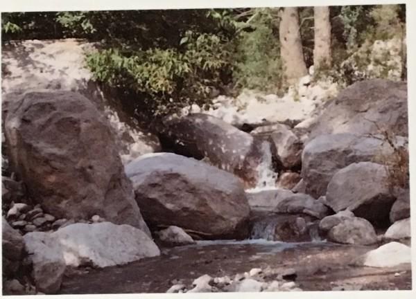 Chiricahua Mountains Waterfall   by Jen Ryder