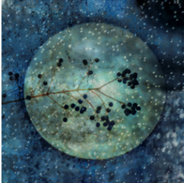 Envisioning Solitude: Snow Moon by Vicky Stromee