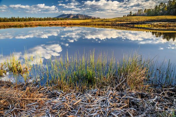 Marshall Lake by Larry Simkins