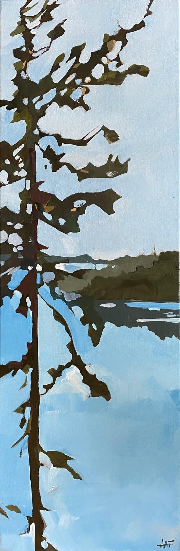 Pine near Scout Island by Holly Ann Friesen