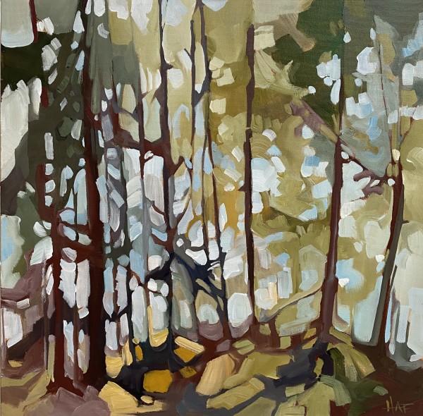Forest Haze 1 by Holly Ann Friesen