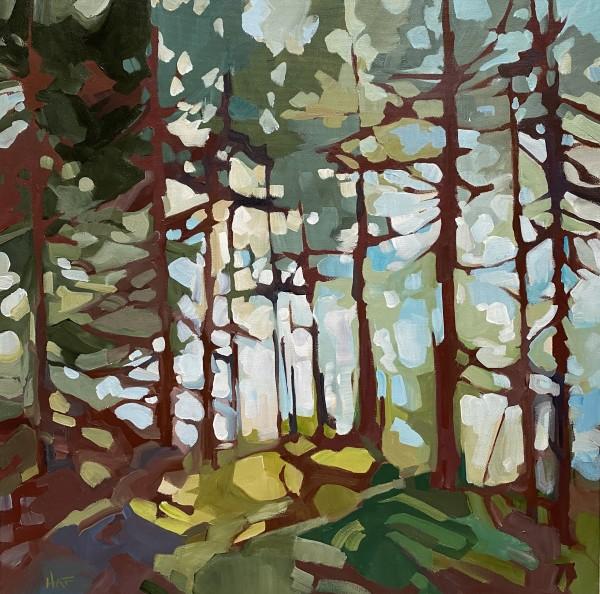 Forest Haze 2 by Holly Ann Friesen