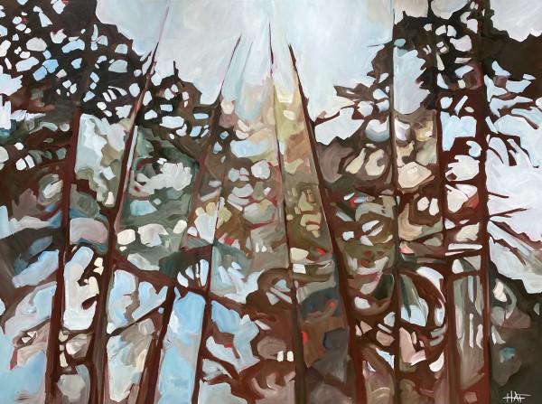 Forest Spot 9 by Holly Ann Friesen